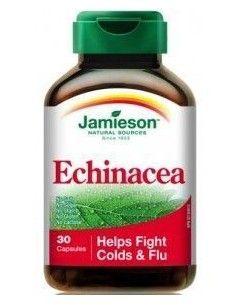 ECHINACEA raiz ext. (5:1) 30 cápsulas